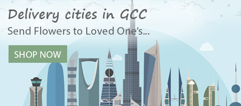 Delivery Cities GCC