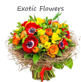 Exotic Flower Delivery GCC