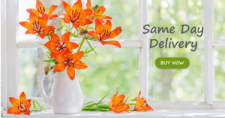 Same Day Flower Delivery in GCC