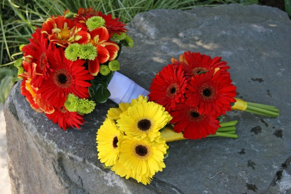 Yellow and red and gerberas